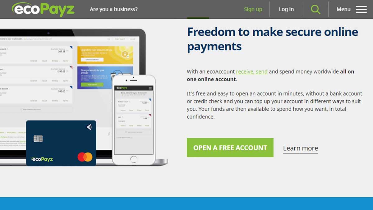 ecoPayz home page screenshot