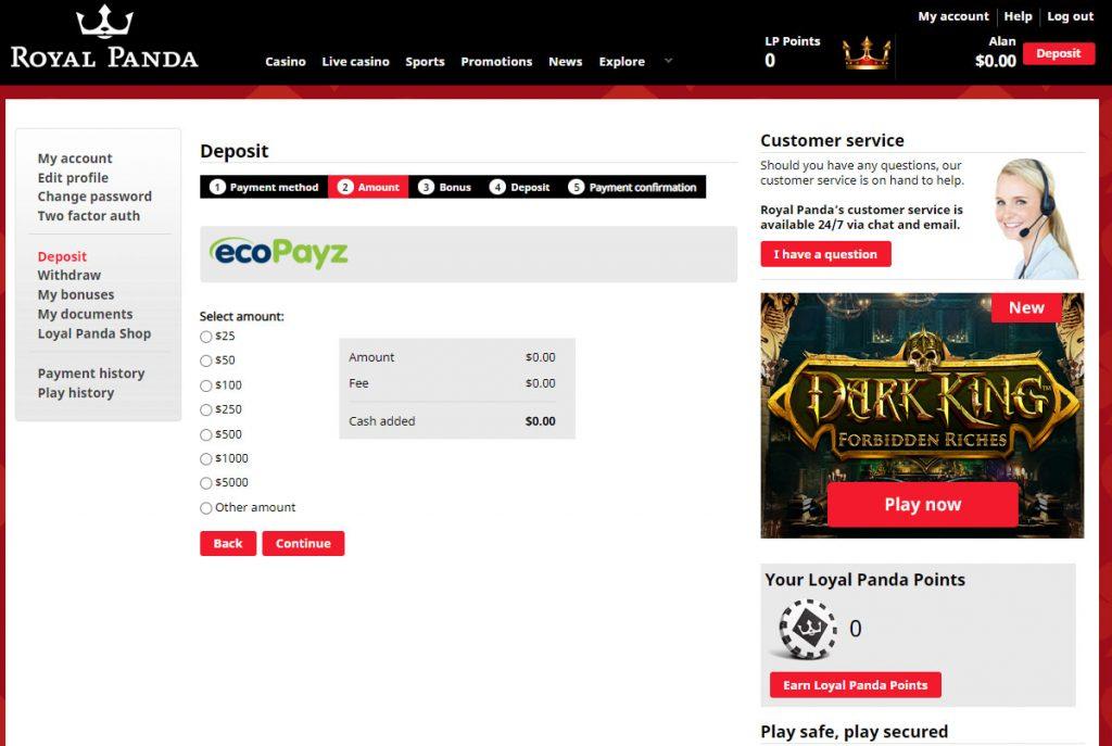 ecoPAyz casino deposit amount screen